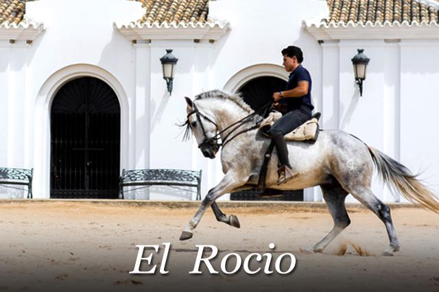 Guías Turísticas Gratis de Huelva, Visita El Rocío